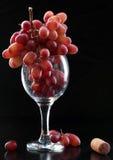 Glas en druiven Royalty-vrije Stock Afbeeldingen