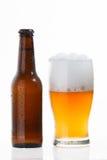 Glas en fles koud bier Royalty-vrije Stock Foto's