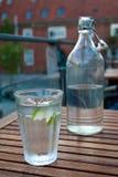 Glas en fles water Royalty-vrije Stock Afbeeldingen