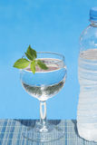 Glas en fles water openlucht Stock Afbeelding
