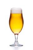 Glas helles frisches Goldbier mit dem Schaum lokalisiert auf Weiß Lizenzfreie Stockfotos