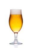 Glas helles kaltes Bier mit dem Schaum lokalisiert auf Weiß Lizenzfreies Stockbild