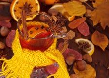 Glas hete overwogen die wijn met heldere gele sjaal op de achtergrond van de kruiden wordt verfraaid royalty-vrije stock foto