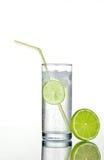 Glas jenever en tonicum met ijs en kalk Royalty-vrije Stock Fotografie