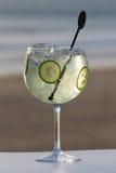 Glas jenever met kruiden royalty-vrije stock foto's