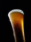 Glas kaltes schäumendes Bier auf einem schwarzen Hintergrund Stockfotografie