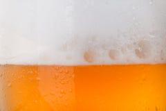 Glas koud bier Stock Fotografie