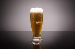 Glas koud bier Stock Foto