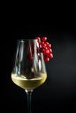 Glas koude witte wijn stock fotografie