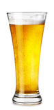 Glas licht bier Stock Afbeelding