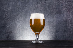 Glas licht bier Royalty-vrije Stock Foto