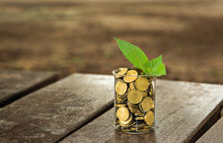 Glas Münzen Lizenzfreies Stockfoto