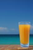 Glas Mangofrucht-Saft lizenzfreie stockbilder