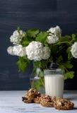 Glas melk en koekjes van noten en rozijnen wordt gemaakt die Royalty-vrije Stock Fotografie