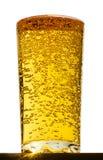 Glas met bellen in bier Stock Afbeelding