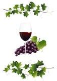 Glas met rode wijn vector illustratie