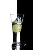 Glas met water en citroen Royalty-vrije Stock Fotografie