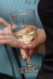 Glas met wijn. stock afbeelding