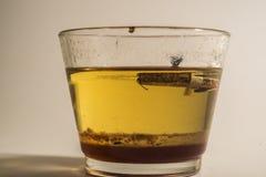 Glas met wiskey Stock Foto