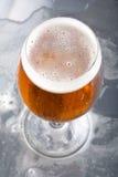 Glas mit Bier und Schaumgummi stockfotos