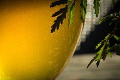 Glas mit kaltem Bier Lizenzfreie Stockbilder
