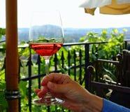 Glas mit Wein Stockbild