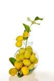 Glas mit Zitronen Stockfotos
