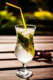 Glas mojito mit Sonnenbrille lizenzfreies stockfoto