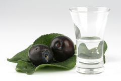 Glas pruimbrandewijn Stock Afbeelding
