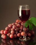 Glas Rotwein. Lizenzfreie Stockbilder