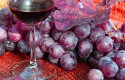 Glas Rotwein mit Bündeln der reifen Trauben Stockfotografie