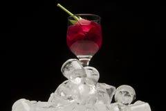 Glas Rotwein mit stieg auf Eiswürfel lizenzfreies stockbild