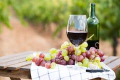 Glas Rotwein und reife Trauben auf Tabelle stockbild