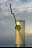 Glas Saft Lizenzfreies Stockfoto