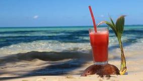 Glas Saft auf einer Kokosnuss auf dem Seestrand stock video