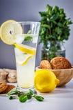 Glas selbst gemachte Limonade Lizenzfreies Stockfoto