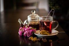 Glas Tee mit Teeball und Teekanne auf Holztisch stockfotografie