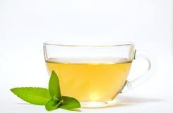 Glas transparante kop met thee en groen muntblad Stock Afbeeldingen