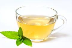 Glas transparante kop met thee en groen muntblad Royalty-vrije Stock Afbeeldingen