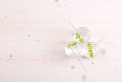 Glas Trinkwasser mit Minze auf einer Tabelle bedeckt mit einem Kontrolleur lizenzfreie stockbilder
