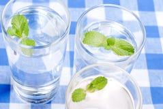 Glas Trinkwasser mit Minze auf einer Tabelle bedeckt mit einem Kontrolleur lizenzfreie stockfotografie