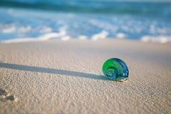 Glas tropische overzeese shell met golven onder zonlicht Royalty-vrije Stock Afbeeldingen