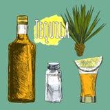 Glas und botlle von Tequila Lizenzfreie Stockfotos
