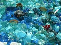 Glas und Fälschungs-Fische Stockbild