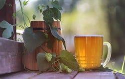Glas van aard van de bier de houten hop Stock Afbeeldingen