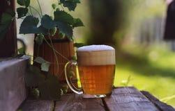 Glas van aard van de bier de houten hop Stock Foto