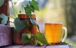 Glas van aard van de bier de houten hop Royalty-vrije Stock Fotografie