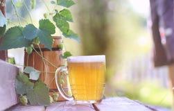 Glas van aard van de bier de houten hop Royalty-vrije Stock Foto