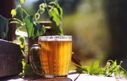 Glas van aard van de bier de houten hop Stock Foto's