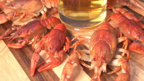 Glas van bier en gekookt crawfishes stock video